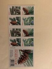 #4478-4481b Holiday Evergreen Forever stamps booklet Pane of 20 MNH