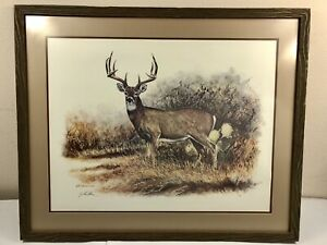 """Gilbert Duran Original Watercolor """"Hill Country Whitetail"""" Signed & Embossed"""