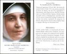 HOLY CARD SANTINO IMAGE PIEUSE - MADRE MARIA ELISA ANDREOLI, serva di Dio