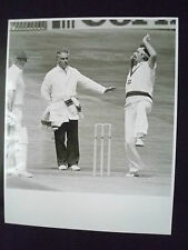 Cricket Press Photo- DAVID EVANS & DENNIS LILLEE IN 3rd Test Headingley Match