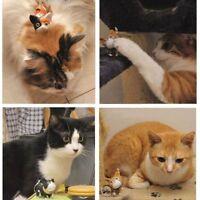 Charm HandBags Pendant Cute Cat Kitten Keyring Kid Toy Keychain Gift