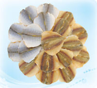 Salted dried fish Russian traditional snack to beer (Made in Russia)