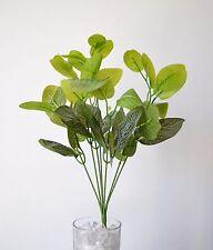 Artificial Fittonia bush - 36cm home displays bridal