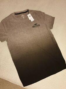 Hollister Medium t shirt BNWT Grey Ombre