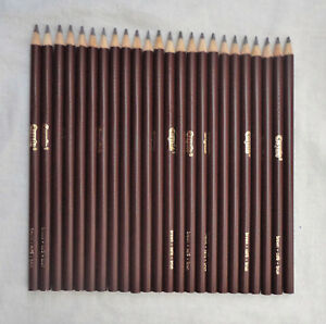 Lot of 24 Crayola Brown Colored Coloring Pencils New Unused