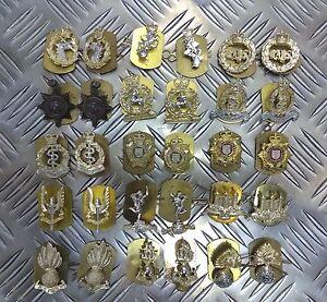 Genuine British Army Military Issue Collar Dogs Metal Regimental Badges Asst