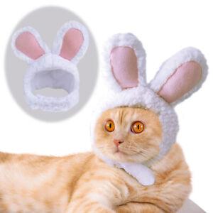 Dog Cat Costume Cosplay Rabbit Headgear Cat Kitten Puppy Hat Head Decoration