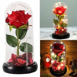 Enchanted Forever Rose Flower In Glass Dome LED Light Wedding Valentine Day Gift