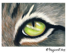"Tabby Cat Animal ACEO Print ""Here's looking at you"" By V Kenworthy"