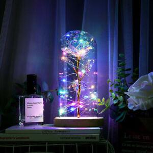 Enchanted Eternal Rose Flower In Glass LED Light Christmas Valentine's Gift US