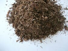BULK 20 PODS OF ORGANICALLY GROWN GOLDEN VIRGINIA TOBACCO SEEDS