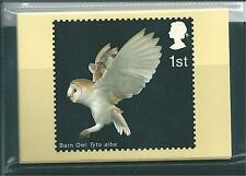 Elizabeth II (1952-Now) Birds Great Britain PHQ Cards