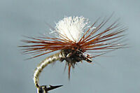 10 x Mouche Tups Indispensable H12//14//16//18 mouche fliegen dry fly fishing mosca