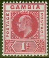 Gambia 1902 1d Carmine SG46 Fine & Fresh Lightly Mtd Mint