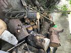 Brennholz / Nadelholz (trockene Stämme je ca. 100 cm sowie Äste etc. KOSTENLOs