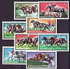 Hungary - Dieren/Animals/Tiere  (Paarden/Horses)