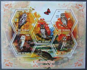 Tchad 2011 - Birds-Owl, 1 M/Sh, MNH, EP 006