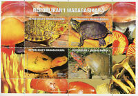 Madagascar 1999 MNH Turtles Turtle 4v M/S Reptiles Stamps