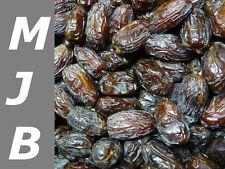 1kg Datteln Medjool, Medjoul aus Israel, die ganz großen!   Medjooldatteln