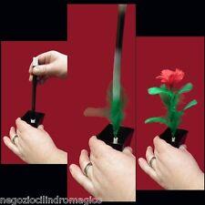 Apparizione fiore da vasetto,giochi di prestigio,trucchi di magia,CILINDROMAGICO