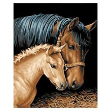 Diy Oil Painting by Numbers -Horses- PBN Kit for Adults Girls Kids White Ch G4N8