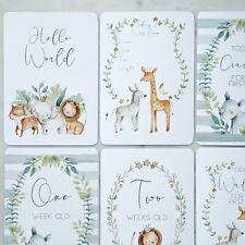 baby milestone cards, safari milestone cards, jungle, baby shower