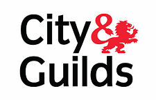 CITY & AND GUILDS VINYL STICKER VAN QUALIFICATION TRADE GAS SAFE NIC EIC ECA