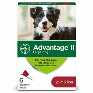 Advantage II For Large Dogs 21-55 lbs 6 Month Supply Flea Preventative Topical