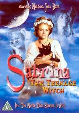 Sabrina The Teenage Witch (DVD, 2005, The Movie)