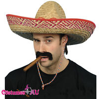 Mens Mexican Embroidered Sombrero Straw Hat Spanish Fiesta Fancy Dress Costume
