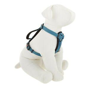 Kong comfort dog padded blue harness Small