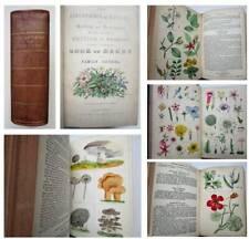 c1854 FAMILY HERBAL Botany Plants Fungi Flowers NINETY SIX HAND COLOURED PLATES