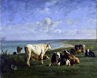 Cattle in Repose by French  Constant Troyon. Animals .  11x14 Print