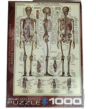 Eurographics The Skeletal System Jigsaw Puzzle 1000 Pieces