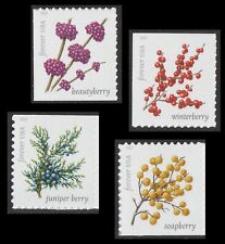 US 5415-5418 Winter Berries forever set (4 single stamps) MNH 2019