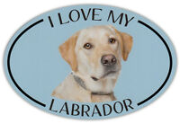 Oval Dog Breed Picture Car Magnet - I Love My Labrador (Yellow Lab) - Sticker