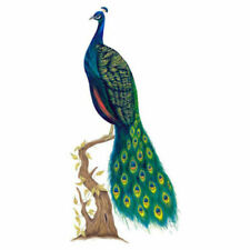Tatouage Peacock Dry rub Transfer - Wall Art Decal Sticker Peacock Decoration