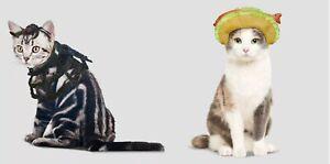 2 Cat Halloween Costumes - Fish Taco Headpiece & Spider Headpiece & Collar #6773