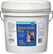 Electrolytes Plus Multi-Species Supplement
