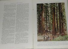 1939 magazine articles on California, Redwoods, Golden Gate, etc