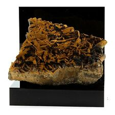 Pyrolusite et Goethite sur Siderite. 2140.1 ct. Peyreblanque Mine, France. Rare