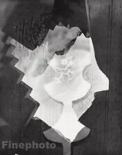 1955 Vintage Heinz Hajek-Halke Surreal Abstract Wood Lace Original Photo Art