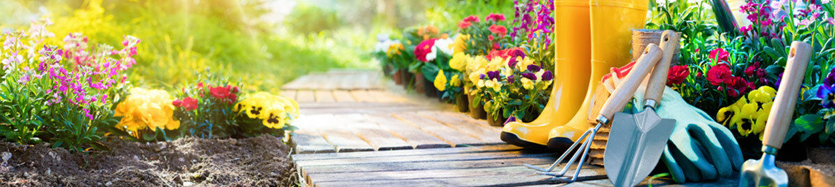 Mein Schöner Garten Shop Ebay Shops