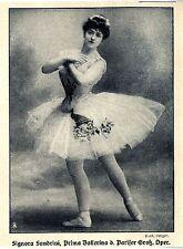 Signora Sandrini Prima Ballerina der Pariser Groß. Oper Histor. Memorabile 1908