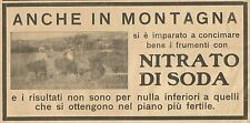 W3062 Frumenti con Nitrato di Soda - Pubblicità 1915 - Advertising