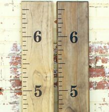 DIY Vinyl Growth Chart Ruler Decal Kit - Traditional Style Black measure lines