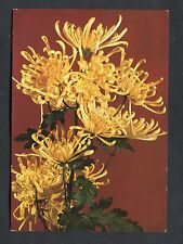 C1980's Czech Card - View of Yellow Flowers.