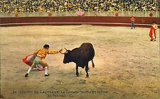 course de taureaux - le toreador touche les cornes (bull fighting )