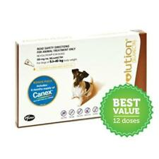 Revolution for Dogs 5.1 to 10 Kg Brown 6 Doses CANEX Flea Heartworm Control
