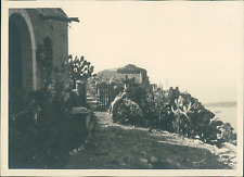 Sicile, Palerme, Une femme et ses fleurs, ca.1925, vintage silver print vintage
